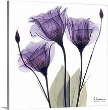 Purple Flower Trio Canvas Wall Art Print, 20