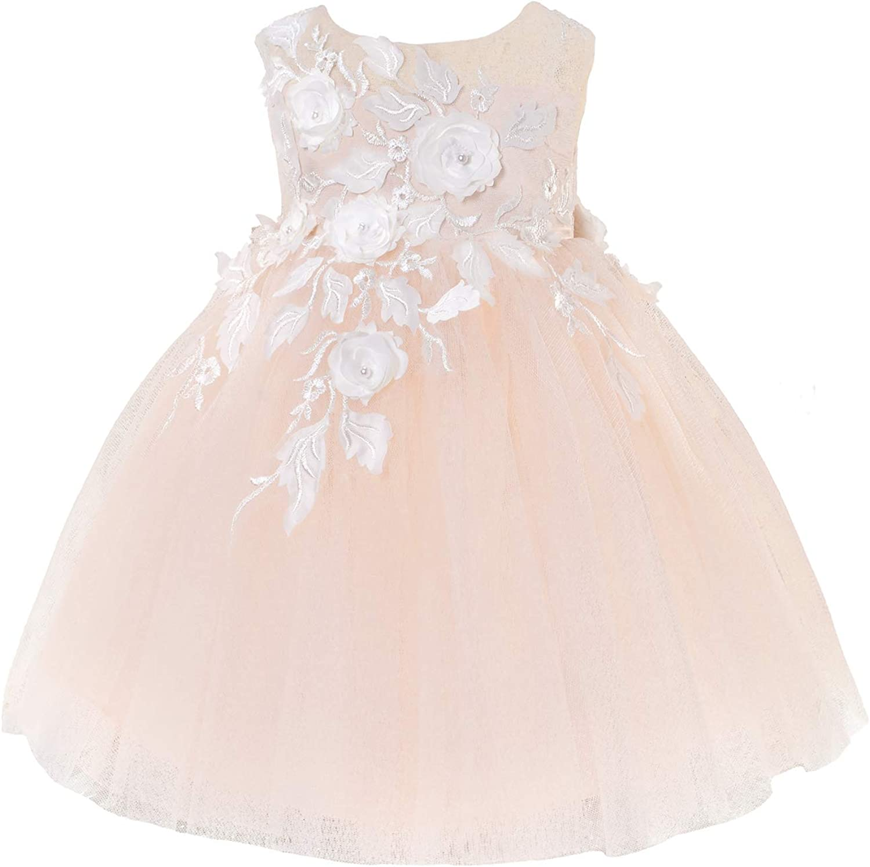 Princess Daliana Baby Girls Embroidere Wedding Ranking TOP2 Dress 3D gift