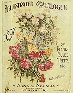 Column Newsprint and Floral Prima Marketing 579135 Garden Fable Cling Rubber Stamps 4 x 6