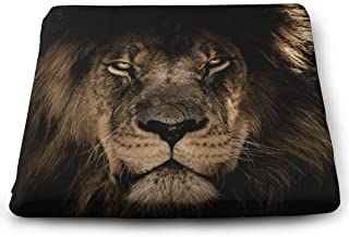 Comfort Seat Cushion Pad for Back Sciatica & Tailbone Pain Relief, African Lion King Mane Close Eyes Memory Foam Cushion Breathable Office Car Sitting Travel Driving Seat Cushion
