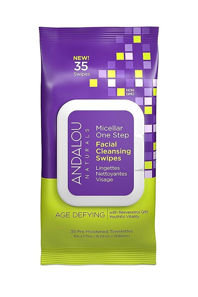 打ち上げるガロンロゴオーガニック ボタニカル クレンジングシート 洗顔シート ナチュラル フルーツ幹細胞 「 Aミセラスワイプ 35枚入り 」 ANDALOU naturals アンダルー ナチュラルズ