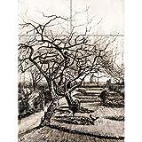Vincent Van Gogh The Parsonage Garden