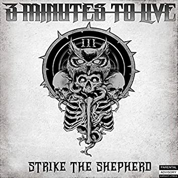Strike the Shepherd