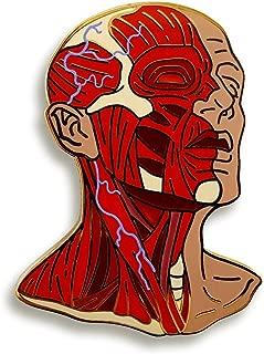 Head Anatomy Enamel Lapel Pin