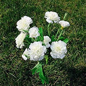 Artificial and Dried Flower 10 Head Carnations Artificial Flowers Silk Fake Flowers Bouquet Home Decoration Flower