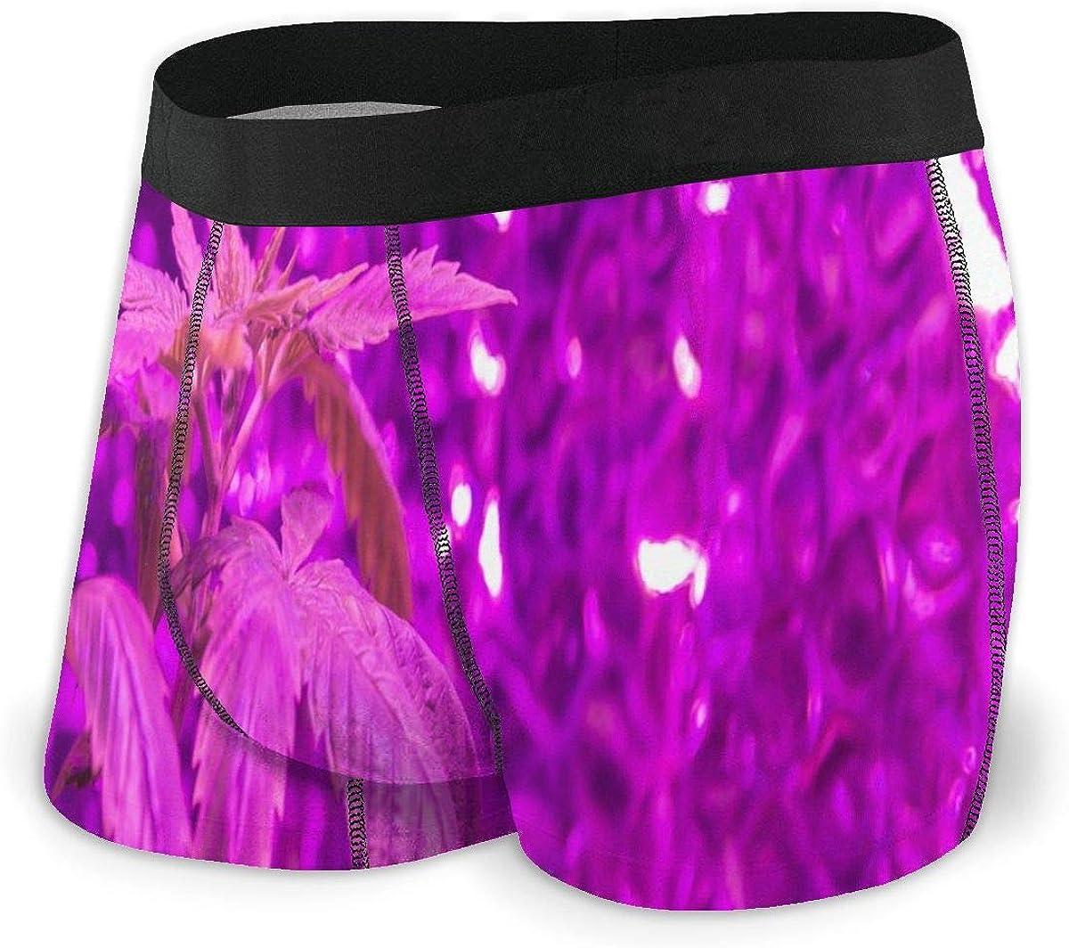 Mens Boxer Briefs Medical Marijuana Purple Bikini Underwear Stretch Low Rise Trunks Boys Underpants