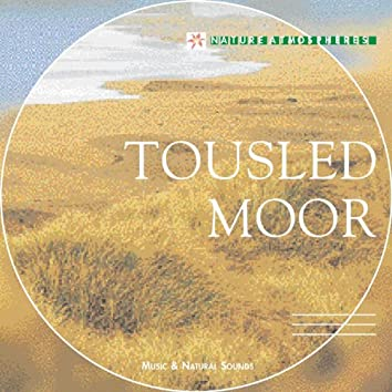 Nature Atmosphere: Tousled Moor (Celtic Dreams)