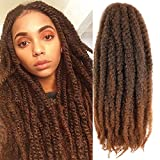 6 Packs Marley Hair 20 Inch Marley Twist Braiding Hair Crochet Braids Long Afro Kinky Synthetic Kanekalon Fiber Marley Hair For Twists Braiding Hair Extensions (20inch, T30)