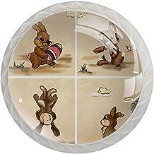 Lade handgrepen trekken ronde kristallen glazen kast knoppen keuken kast handvat,konijn illustratie