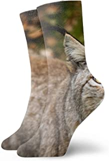 Calcetines Men & Women Athletic Zebra Whether The Original Ass Savannah Socks abstract Wicking Casual Socks Lynx Teeth3