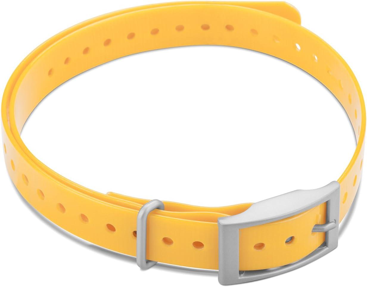 Garmin 3/4-Inch Collar Strap Square Buckle for Delta Series Do