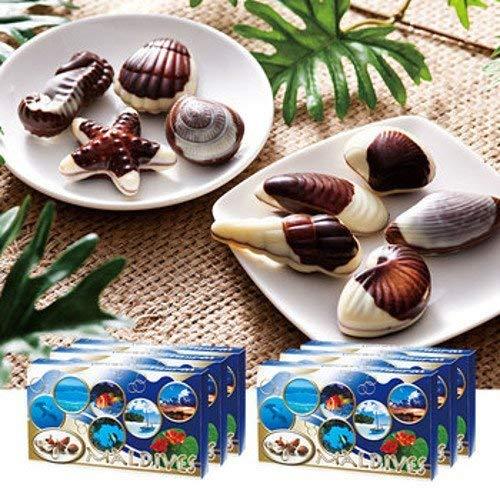 モルディブ シーシェル チョコレート 6箱セット 【モルディブ おみやげ(お土産) 輸入食品 スイーツ】
