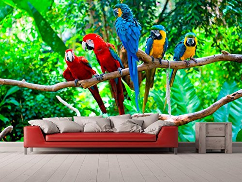 Oedim Fototapete Wallpaper Wand Dschungel und Papagei| Fototapete für Wände | Wandbild | Dekoratives Vinyl | Verschiedene Maße 200 x 150 cm | Dekor Esszimmer, Wohnzimmer, Zimmer
