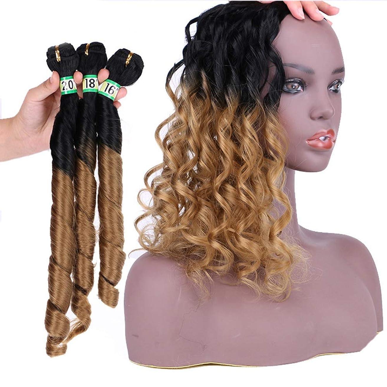 問い合わせるしないでくださいハウジングIsikawan 巻き毛織りエクステンション - T1 / 27ブラウングラデーション3バンドル人工毛ブラジル春 (色 : ブラウン, サイズ : 20