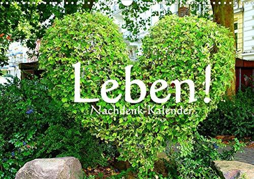 Leben! - Nachdenk-Kalender (Wandkalender 2021 DIN A3 quer)