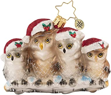 Christopher Radko Hand-Crafted European Glass Christmas Decorative Ornament, It's Owl in The Family Gem