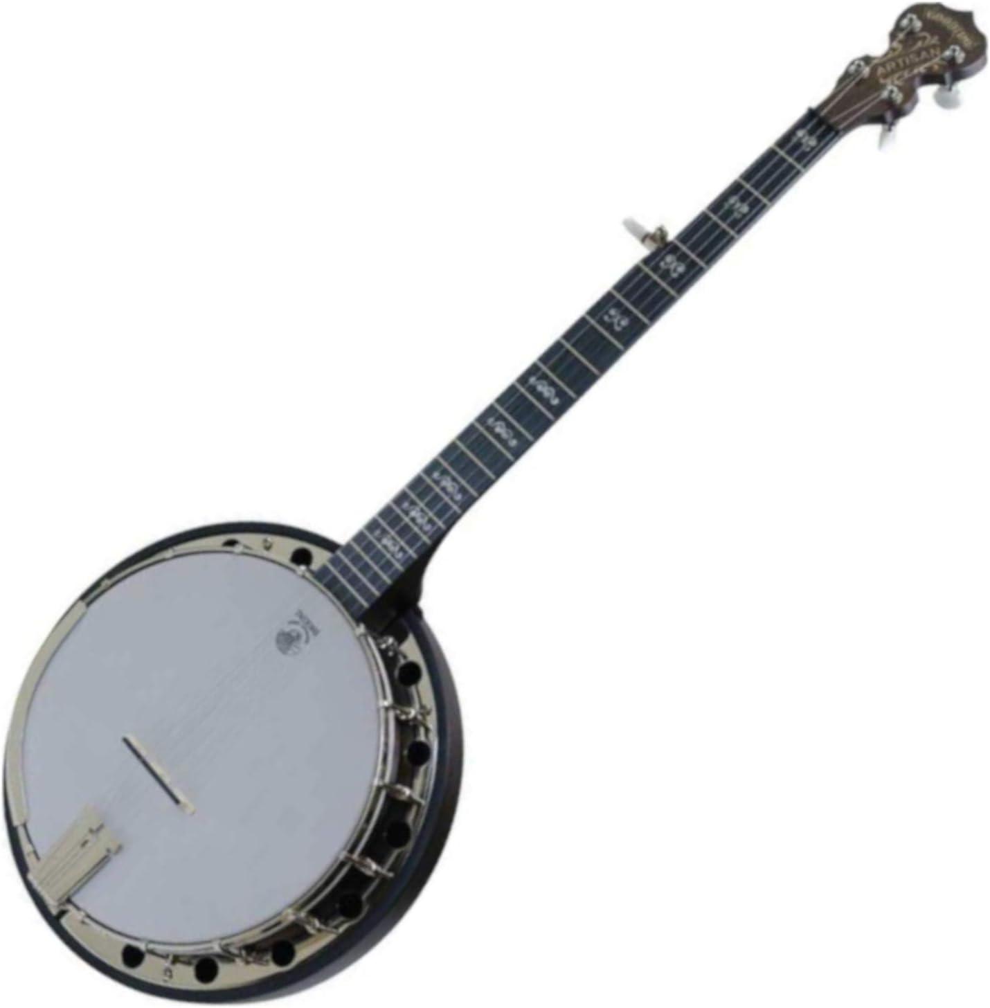 Deering A2 Artisan supreme Goodtime with Two Resonator Spring new work Banjo