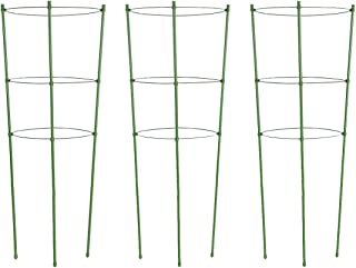 Best cherry tomato cage Reviews