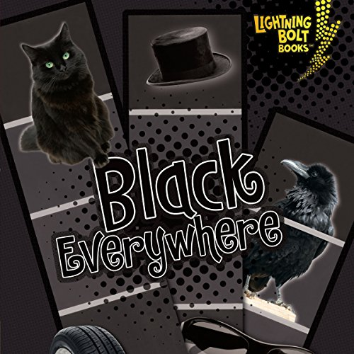 Black Everywhere audiobook cover art