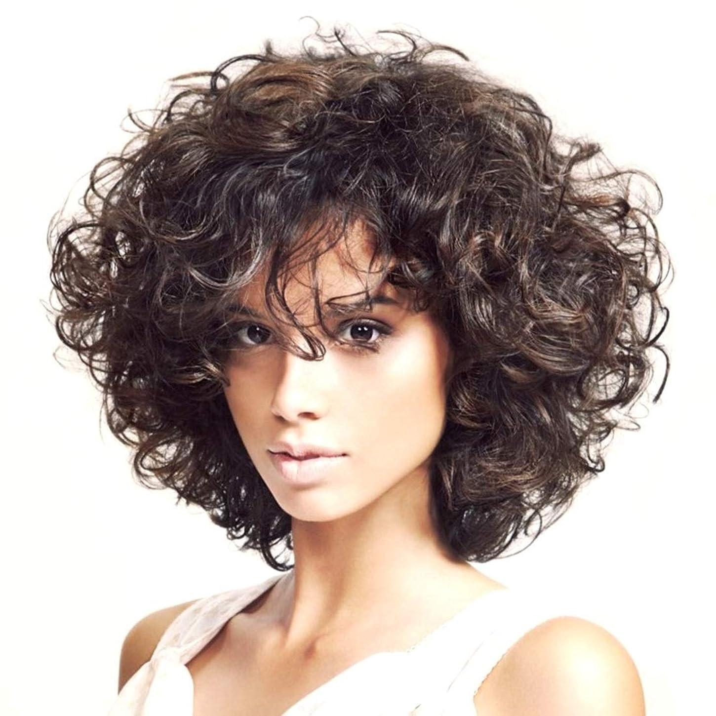 染料我慢する広範囲にKoloeplf 13インチ高温かつら女性の短い巻き毛の部分的にbagnsかつら耐熱性のためのふわふわの小さなかつら(こげ茶)