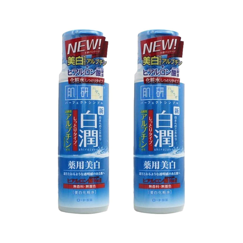 どちらか縮れたかまど【2本セット】 肌ラボ 白潤 薬用美白化粧水 しっとりタイプ 170mL (医薬部外品)× 2本