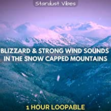 Blizzard & Strong Wind Sounds in the Snow Capped Mountains: One Hour (Loopable)