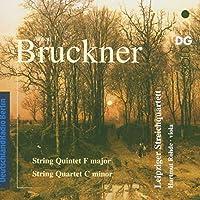 Bruckner: String Quintet / String Quartet