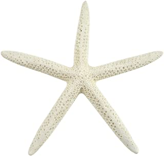 "Starfish, 15 Medium White Finger (Pencil) Star Fish 4-6"" inches (Set of 15) by Coastal Beach Home Decor, Christmas Ornaments, Crafts, Weddings & more"