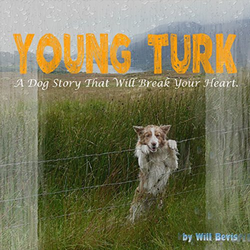 Young Turk audiobook cover art