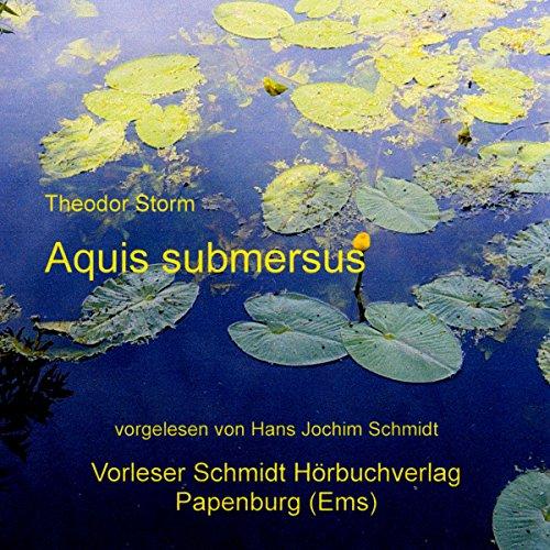 Aquis submersus audiobook cover art