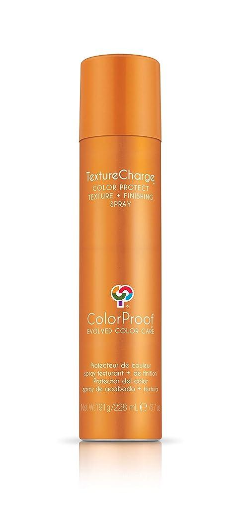 ラグジョセフバンクス蛇行ColorProof Evolved Color Care ColorProof色ケア当局テクスチャチャージ色&保護仕上げスプレー、6.7オズ オレンジ