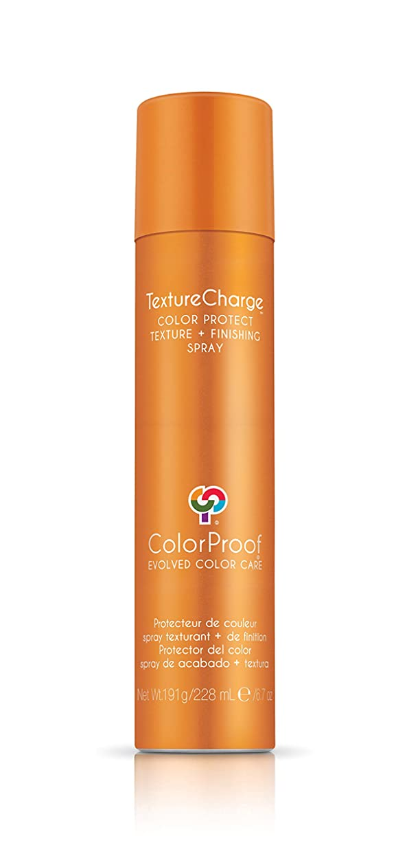 パステルベッツィトロットウッド解読するColorProof Evolved Color Care ColorProof色ケア当局テクスチャチャージ色&保護仕上げスプレー、6.7オズ オレンジ