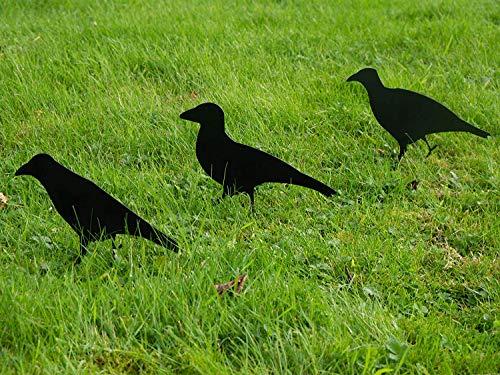 garden mile 3 x Black Bird Crow Animal Decoy Bird Scarers Rook Decoys Magpie Shooting Pigeon Scarer Deterrent Gardens Raven Hunting Target Metal