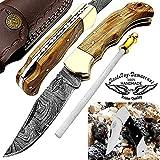 Pocket Knife Olive Wood 6.5'' Steel Knife Brass Bolster Back Lock hunting Folding Knife + Sharpening...