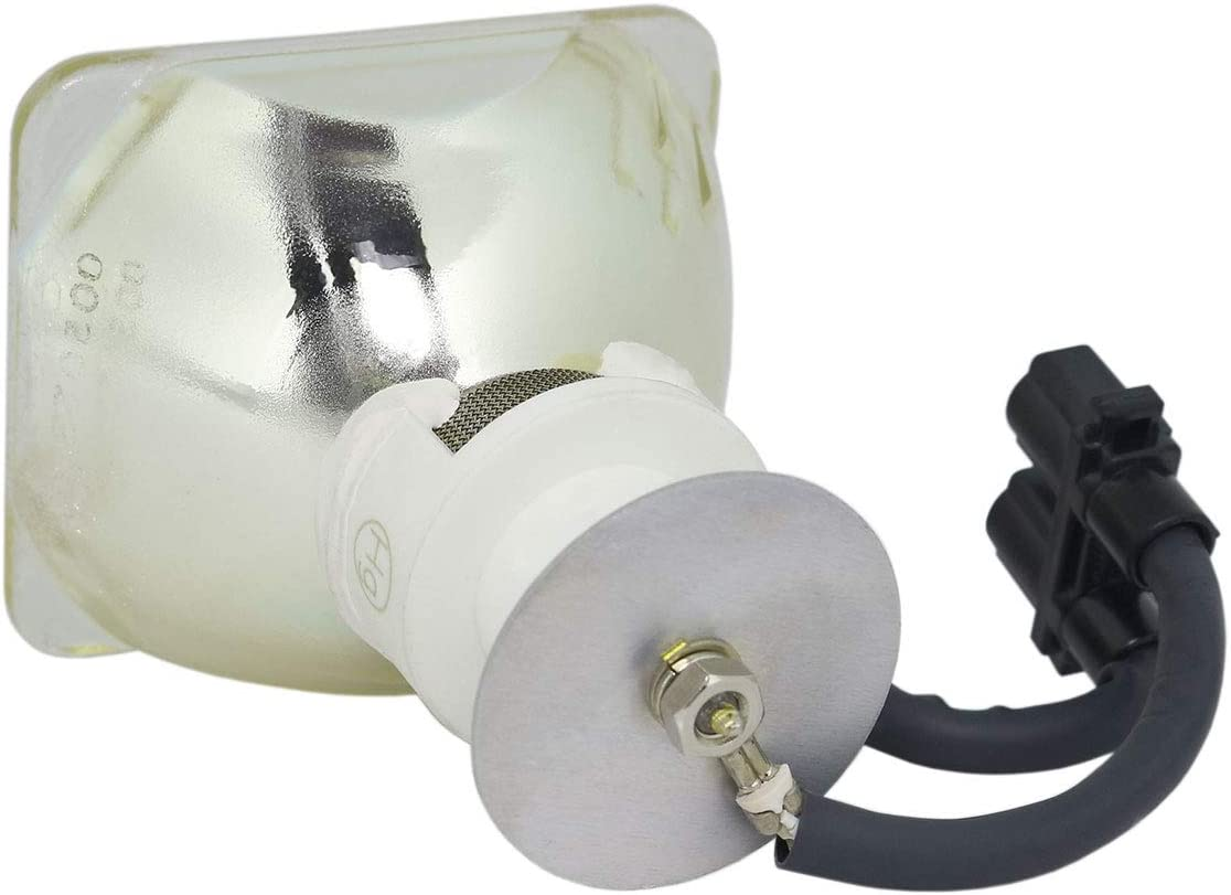 Long Life by LucentBulb for Canon RS-LP02 Lamp Only