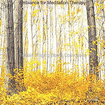 Ambiance for Meditation Therapy