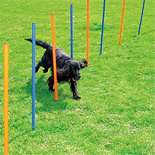 Hond Agility Training Equipment Outdoor Games Oefening Hurdle Bar Geweldig als onderdeel van een gevarieerd fitnessprogramma voor uw huisdier