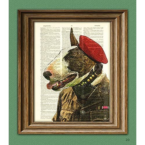 9057b7dc0f0 Bull Terrier English SAS Soldier illustration beautifully upcycled  dictionary page book art print