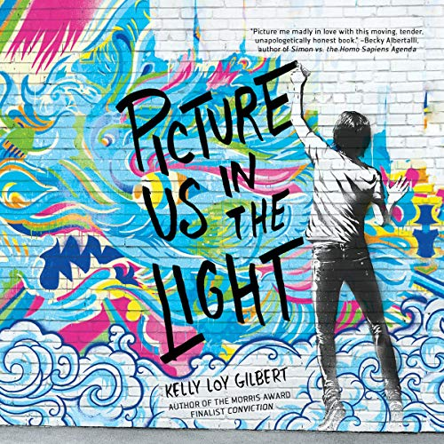 Picture Us in the Light audiobook cover art