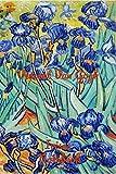 Vincent Van Gogh Irises Notebook: Password Logbook in Disguise with Beautiful Vincent Van Gogh Quote and Art (Discreet Password Keeper / Organizer)for men women kids art lovers