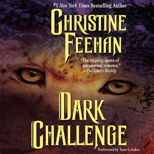 Dark Challenge audiobook cover art