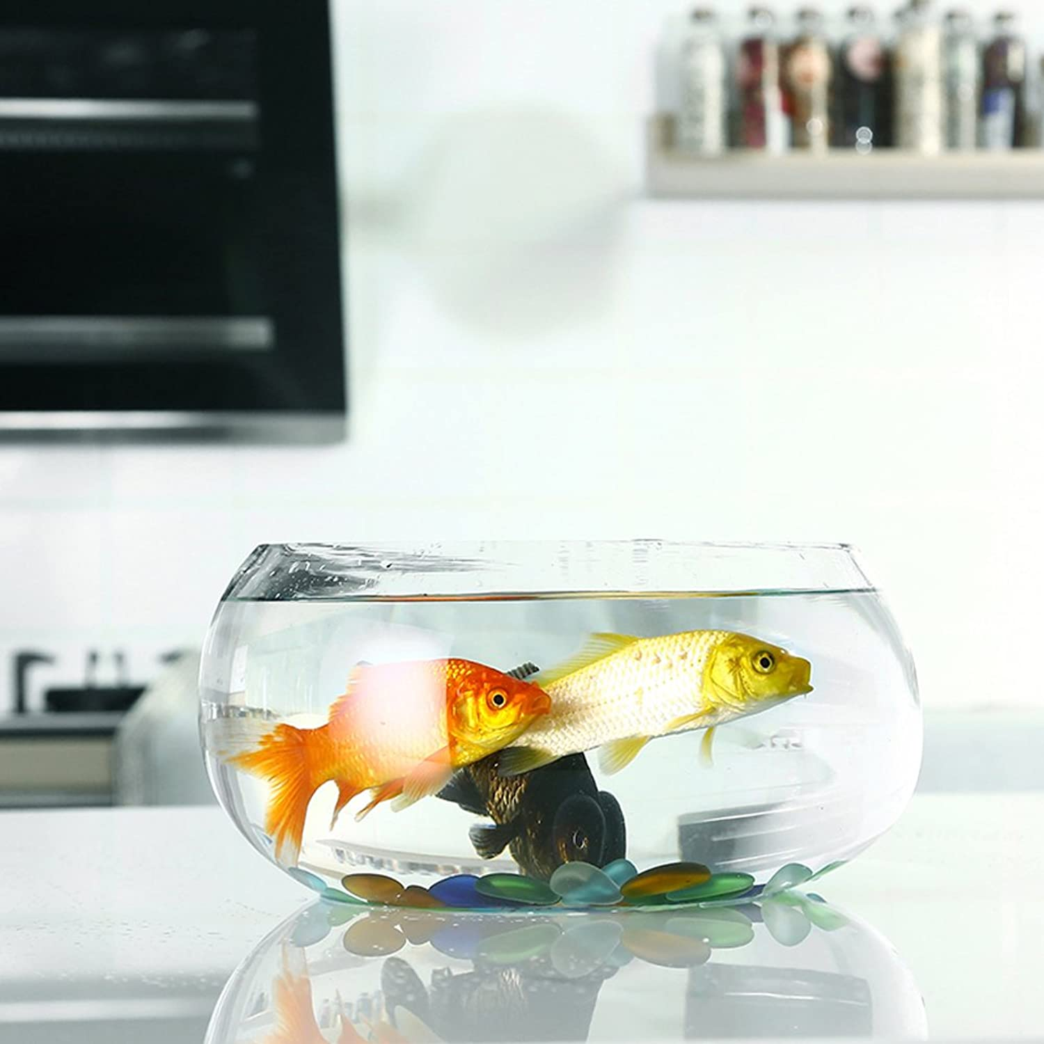 JIANGU creative transparent circular glass fish tank, mini office desktop aquarium, hydroponic container medium vase