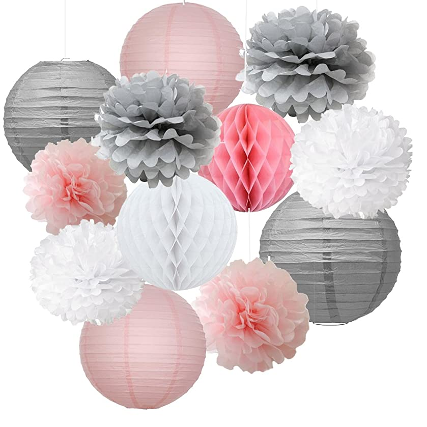 12pcs Mixed Pink Gray White Decorative Paper Pompoms Flower Hanging Paper Lantern Honeycomb Balls Wedding Birthday Christening Girl Baby Shower Nursery Mobiles