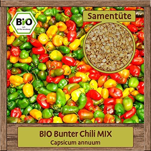 10 Premium BIO Bunter Chili-Samen MIX Saatgut samenfest & mehrjährig zur Anzucht und zum Anbauen ca. 10 Pflanzen