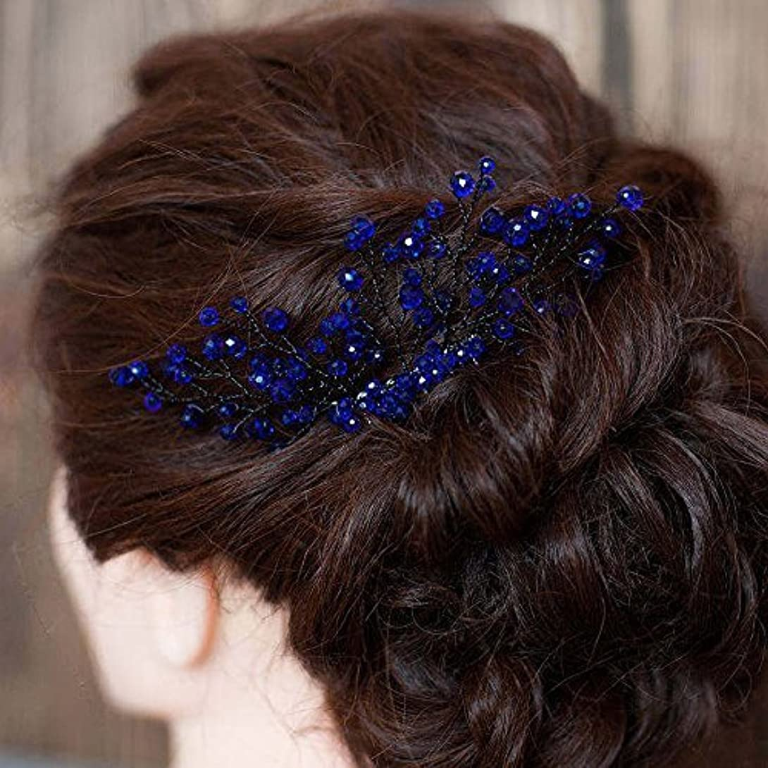 形家庭発音FXmimior Bridal Women Navy Blue Vintage Crystal Rhinestone Vintage Hair Comb Wedding Party Hair Accessories [並行輸入品]