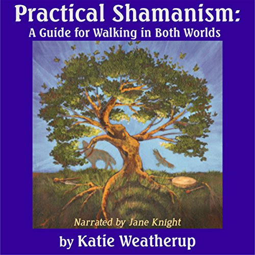 Practical Shamanism: A Guide for Walking in Both Worlds audiobook cover art