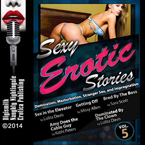 Sexy Erotic Stories: Domination, Masturbation, Stranger Sex, and Impregnation cover art