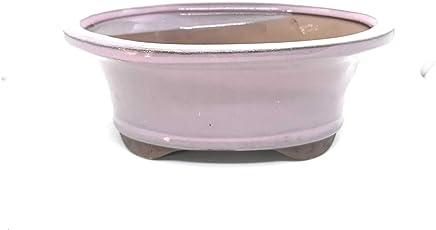 """Bonsai Tree Pot 6"""" (Pink Lemonade)"""