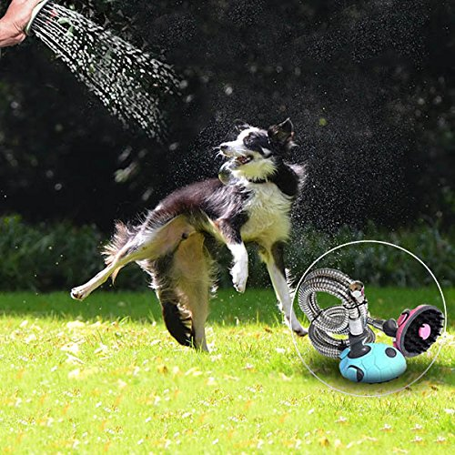 Bazaar Multifunctional Pet Dog Cat Shower Head Shampoo Brush Grooming Bath Water Spray Sprayer