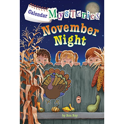November Night audiobook cover art